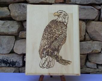 Perched Bald Eagle Woodburning Pyrography