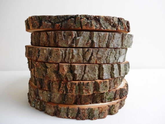 Wood slices tree slices 7 wood slices wood slabs for Wood trunk slices