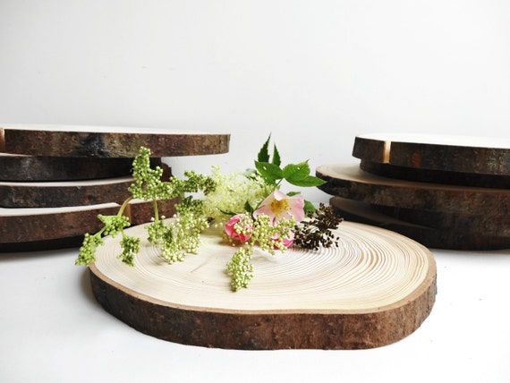 Set of wood slabs slices wedding by