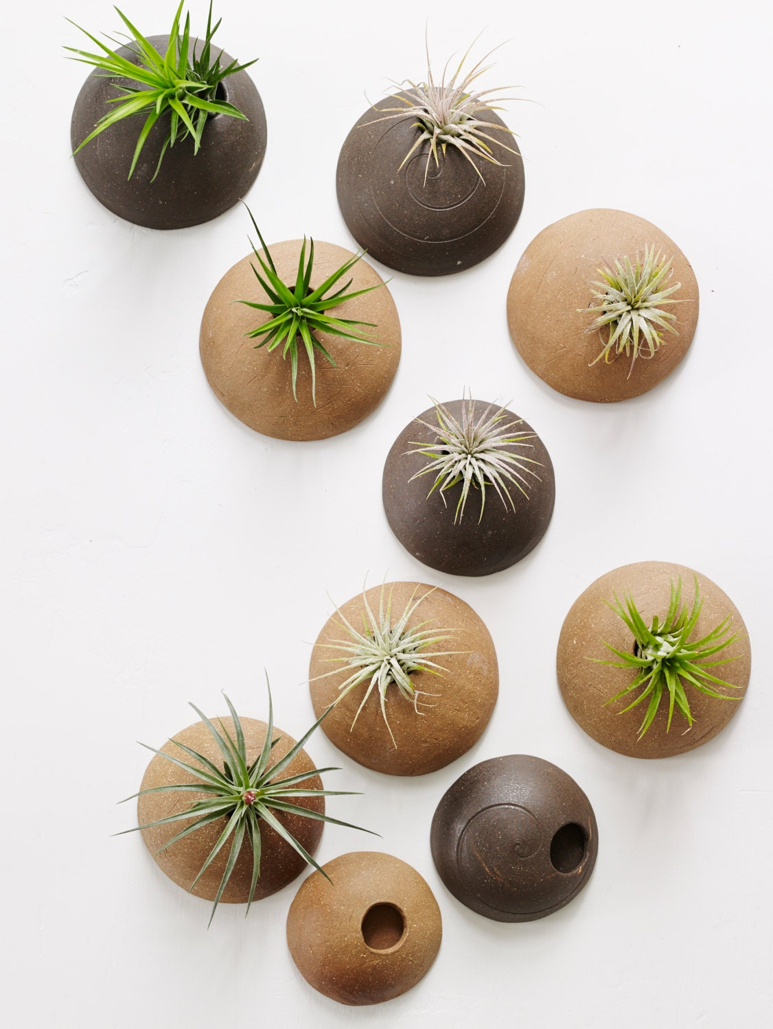 Customized set of wall planters made to order wall for Air plant planters