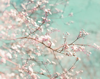 Nature photography, Spring,Trees, Branches, Blossom, Aqua, Pink, Wall Decor