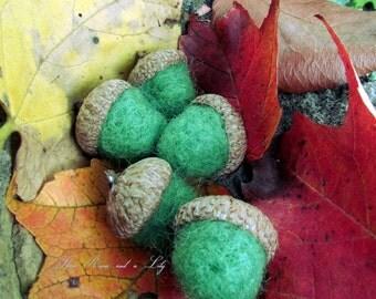 Green Needle Felted Acorns, Set of 5