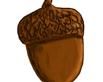 Acorn Clip Art, acorn clipart, fall clipart, fall graphic, autumn clipart, watercolor clipart, commercial use, acorn printable acorn digital
