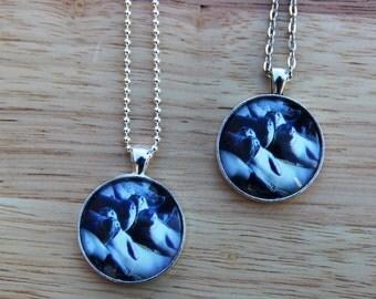 Pendant necklace, seals in Maine, fun jewelry, wildlife jewelry, birthday gift, photo jewelry, gift idea for her, glass charm original photo