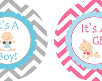 On Sale It's A Boy and It's A Girl Gender Reveal Stickers Baby Stickers Milestone Stickers Baby Month Stickers Monthly Bodysuit Stickers