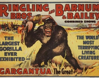 Ringling Brothers, Barnum & Bailey, Circus art, Gargantua the Great, Gorillas, monkeys, apes, antique art, animal art, vintage circus art