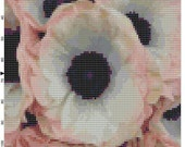 Cross Stitch Pattern Apricot Anemones Flower PDF Instant Download Digital File Flower Cross Stitch Chart