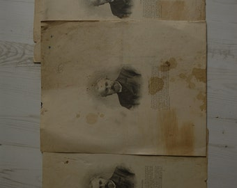 french illustration lot of three identical vintage