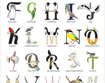 Words of a Feather alphabet poster