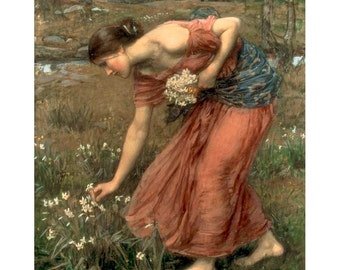 Waterhouse - Narcissus gathering flowers beautiful fine art print in choice of sizes