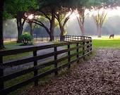 Horse Farm Fence - Ocala ...