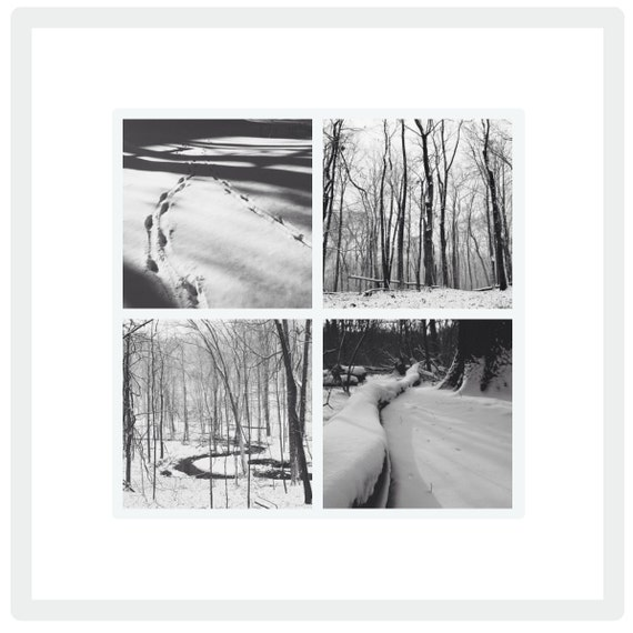 Winter in PA: Black and White