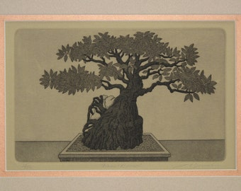 Ficus bonsai - Original hand-pulled etching