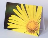 Daisy photo greeting card