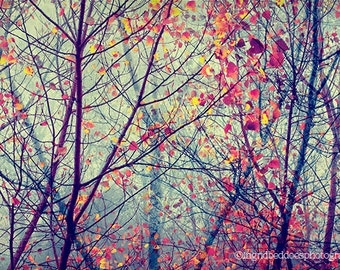Fall photography, autumn photograph, red autumn leaves, fall colors, whimsical art print, surreal nature photography, home decor, wall decor