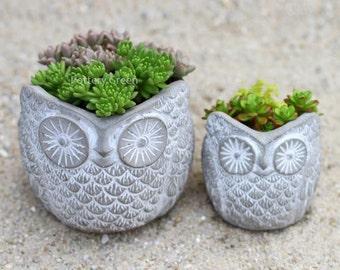 Concrete Owl planters set of 2 (small & large)