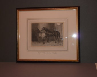Horse print 19th Century