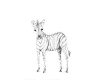 Zebra Art Print, Safari Nursery, Animal Nursery Art, Baby Animal Art,  Grey Nursery Decor, Animal Sketch Print, Pencil Drawing, Zoo Animals