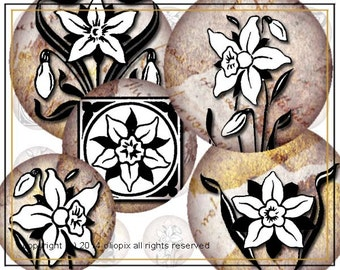 Medieval Daffodils Muted Textured Background 1 inch circles digital collage sheet 0025