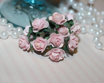 Soft Pink Mulberry Roses