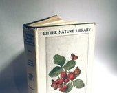 Butterflies Worth Knowing Book by Clarence M. Weed 1917 Little Nature Library Doubleday Skipper Moth Caterpillar Chrysalis Swallowtail