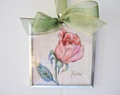 Art Print 3x3 Print Flower of the Month June Rose Beveled Glass