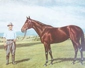 Vintage Horse Print - Long Look Print - Derby Horse Print - Thoroughbred Print - Richard Stone Reeves - Signed Vintage Equestrian Art