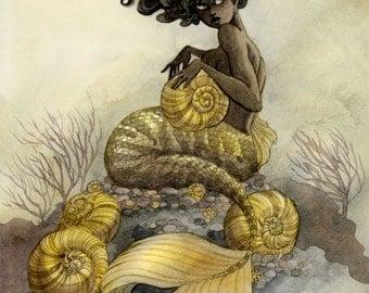 Sea Snail Mermaid - 8x10 print