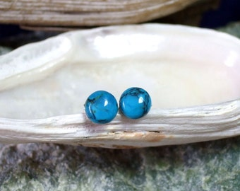 5.5mm Real Turquoise Titanium Ear Posts Backings Friendship Studs Post Earrings Earings Hypo Allergenic
