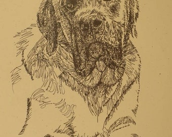 Mastiff dog art portrait drawing from words. Your dog's name added into art FREE. Great gift. Signed Kline 11X17 Lithograph 47/500.