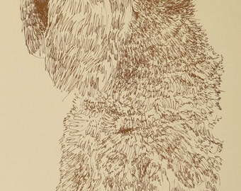 Soft Coated Wheaten Terrier  dog art portrait drawing from words. Your dog's name added into art FREE. Signed Kline 11X17 Lithograph #39