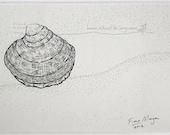 SEA SHELL Drawing Beach Decor ORIGINAL Matted Nature illustration Botanical Black & White pen ink zen mindfulness
