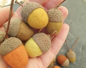 felted acorns set of 5, natural dyed