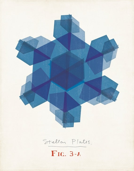 Modern Snowflake Illustration Blue Stellar Plate Snowflake Limited Edition Print