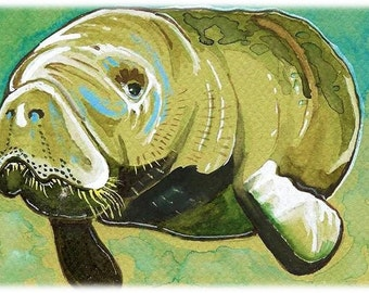 Manatee Watercolor Painting Print, Artist Signed