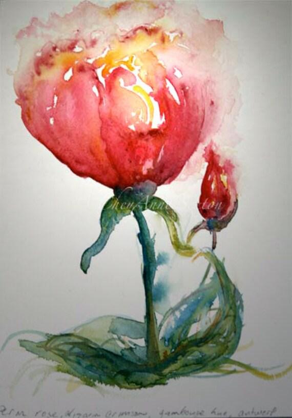 Aprils Pink Rose of Love - original watercolor 7x10
