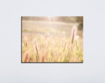Nature Canvas Photography, Beige Canvas Art, Yellow Light Brown, Boho Wall Art, Wheat Fields, Large Wall Art