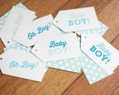 Baby Boy Gift Tags, set of 12