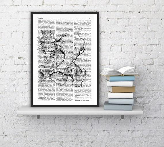 Summer Sale Wall Art Pelvis bones - Skeleton Anatomy Study art Print, science print, Pelvis print gift, print, Pelvis bones SKA025