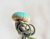 Turquoise Gold OMBRE Jellyfish Air Plant // Sea Urchin Wedding Favor Decor gradient house plant shell hanging art holiday ornament xmas