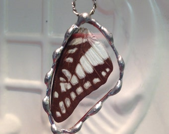 Real Butterfly Wing Pendant  - Chestnut Tiger Butterfly - Hand Soldered - Great Springtime Gift and birthday gift