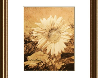 Vintage Look SUNFLOWER GRUNGE Sepia Sunflower Photo Print Decor