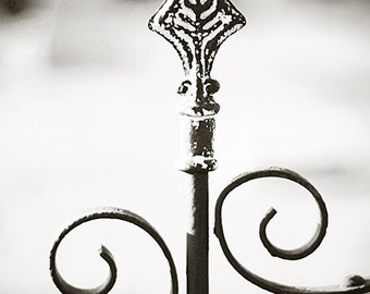 Cemetery Fleur - Wrought Iron Gate Photography Print, Black and White Home Decor Wall Art 4x6, 6x9, 8x12