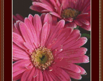 Gerbera Daisy Pink Cross Stitch Pattern