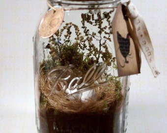 Sale~25% Off~Mason Jar Nest and Eggs Rustic Home Decor
