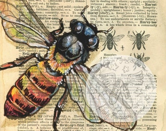 PRINT:  Honey Bee Drawing on 1890's, Distressed Dictionary