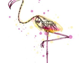 Flamingo Skeleton Fine Art Print