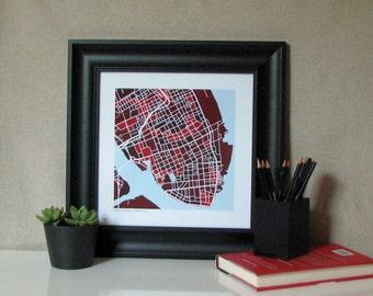 College of Charleston Map Print