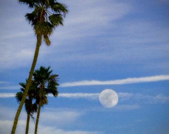 Palm Trees, Moonrise, Moon, Sky, Beach, California, Summer, Landscape, Photographic Print, Kristine Cramer Photography