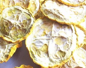 Organic Dried Yellow Squash Veggie Chips / Eight Flavors / Gluten Free / Vegan / No Sugar Added / Oil Free